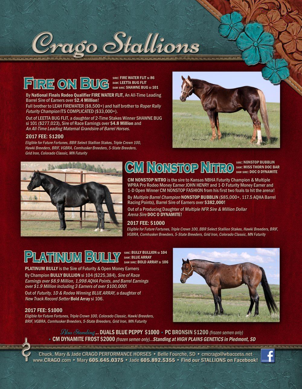 2016 Stallion Ad
